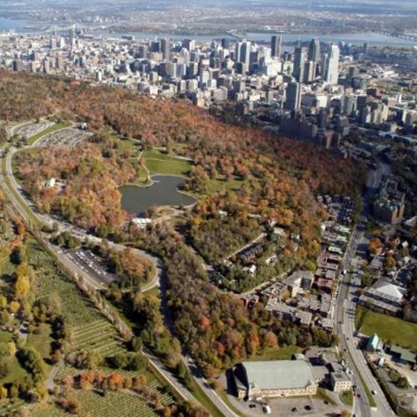 ALI Montreal Canada